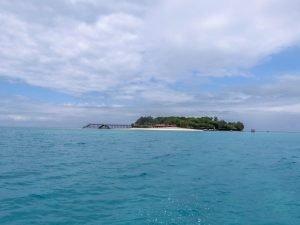 Малък остров по време на сафари блу, група 2019г