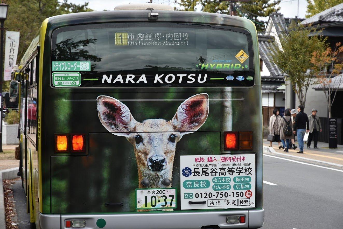Bus in Nara, Japan