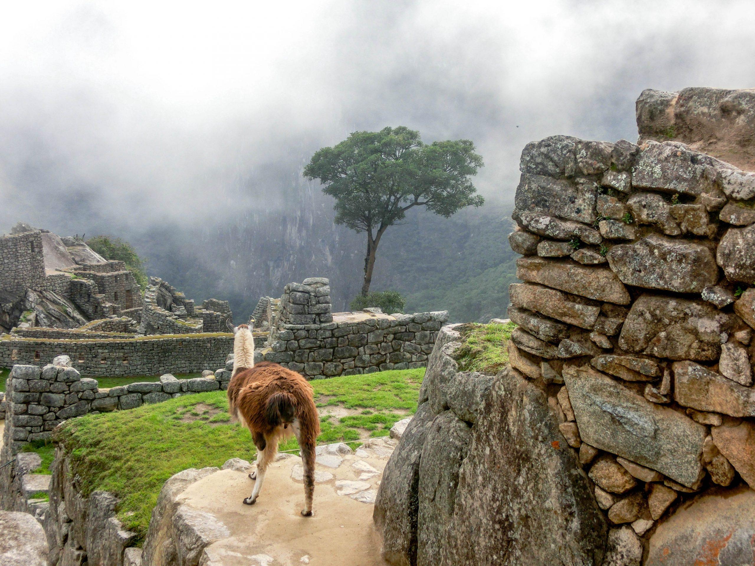 Перу – в търсене на вълшебната страна на инките!