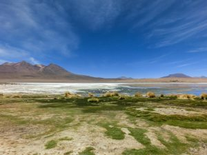 Salt flats and lagoons, Bolivia