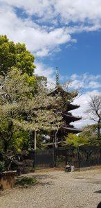 Pagoda in Japan