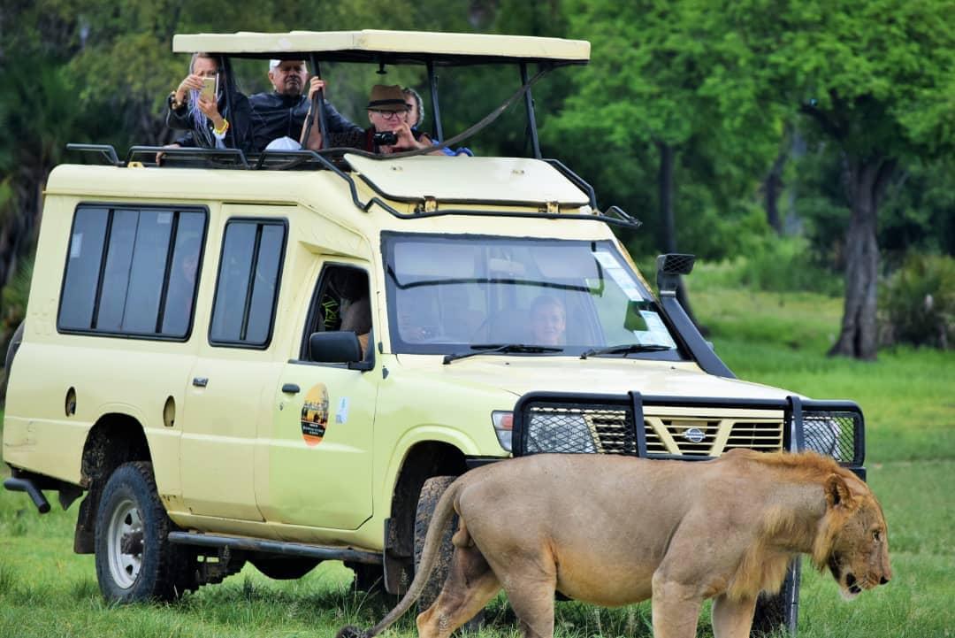 Сафари в Африка – индивидуално пътуване