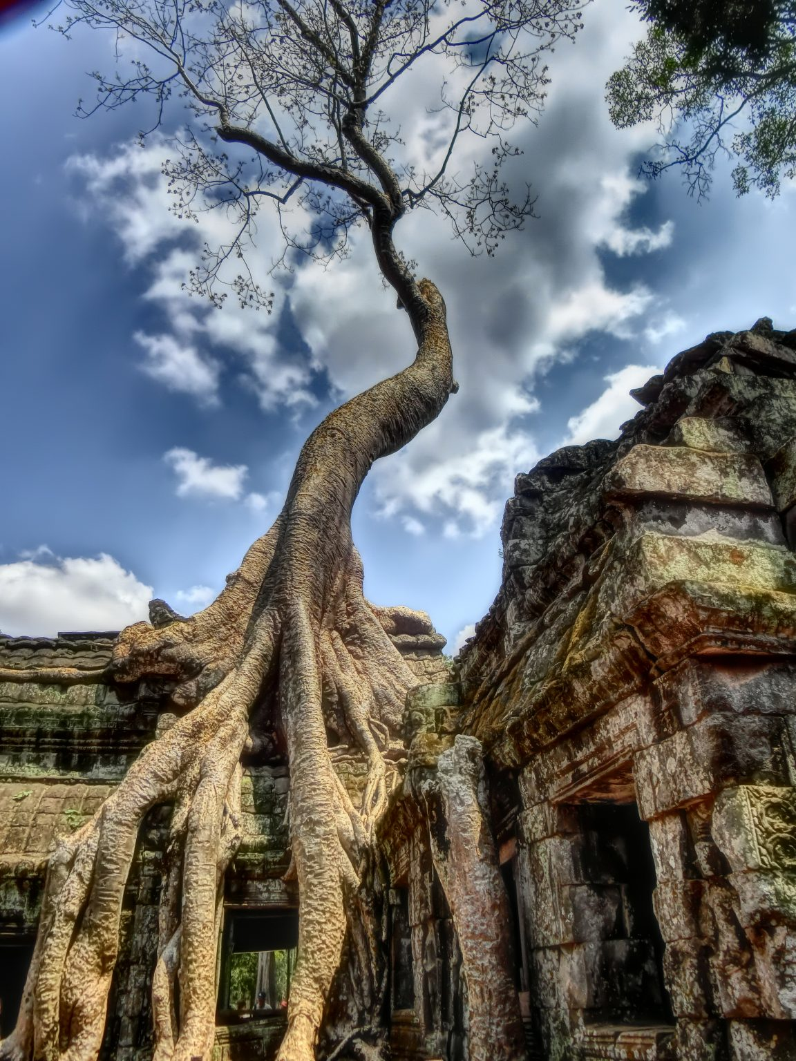 Храмът Ангкор Том, наричан още от местните храмът на Анджелина Джоли, защото точно тук е сниман Томб Райдър.