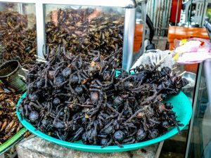 Siem Reap, Cambodia, fried spiders, food, Сием Рип, Камбоджа
