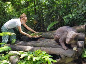 Грижа за животните в спасителния център на Амазон планет